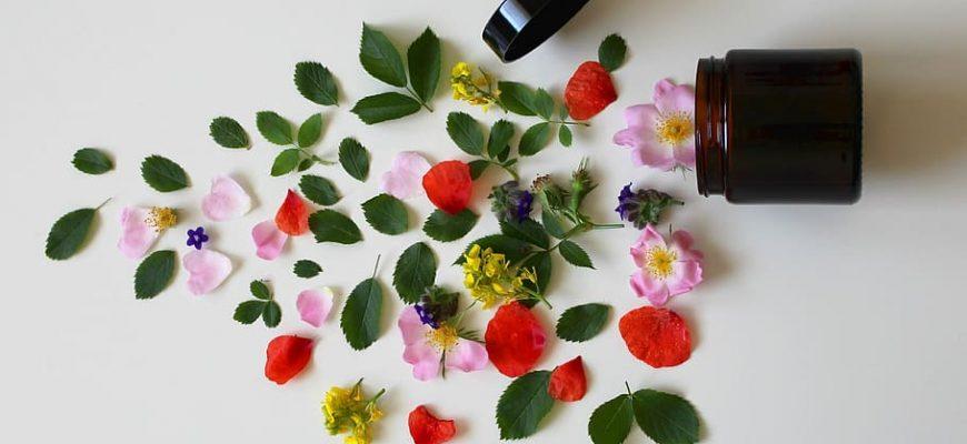9 צמחי המרפא החזקים ביותר של הטבע והמדע שמאחוריהם